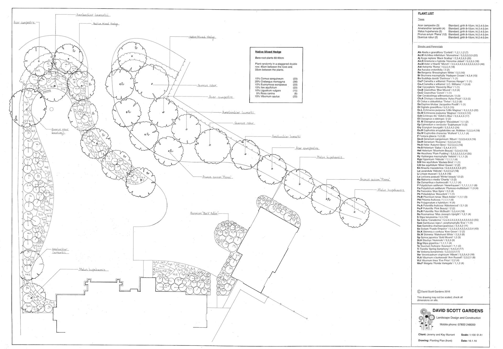 Bryher House Planting Front. Revision.1 copy 2